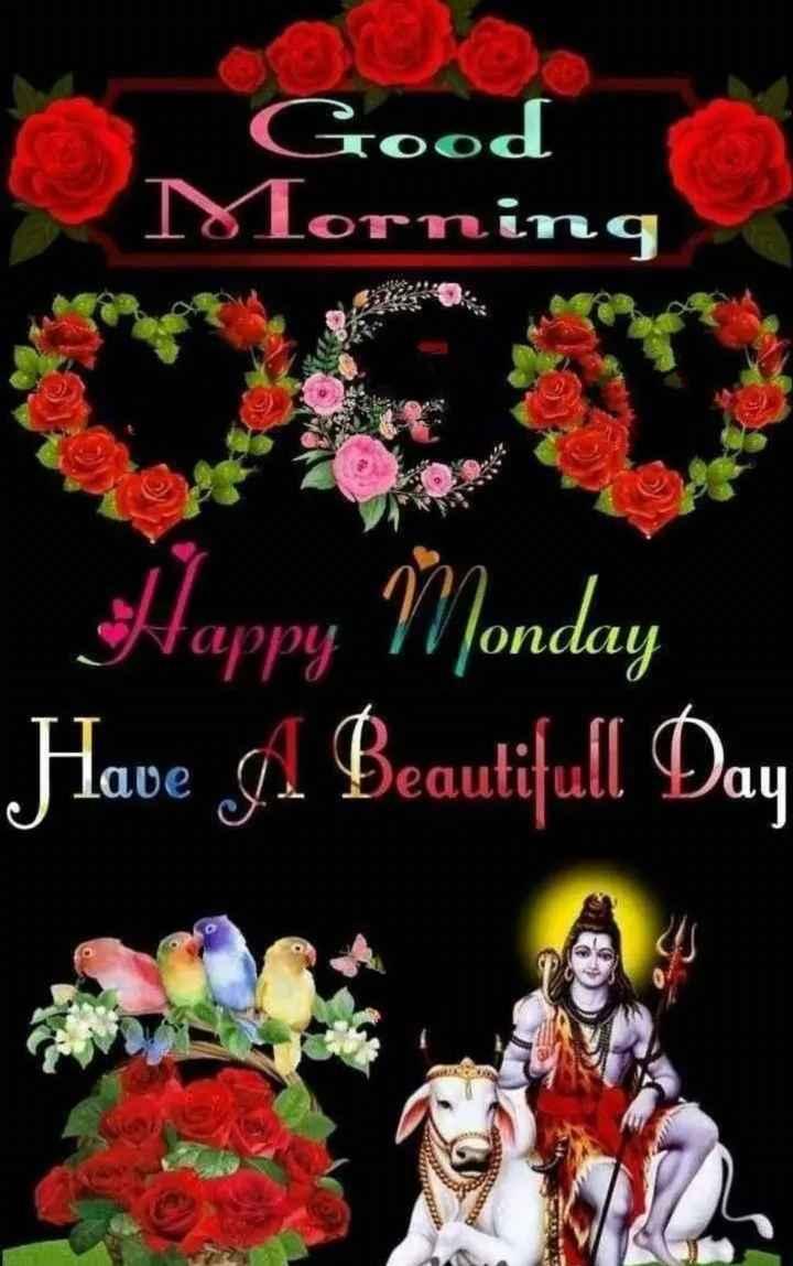 🌅శుభోదయం - Tood Morning Happy Monday Have A Beautifull Day - ShareChat