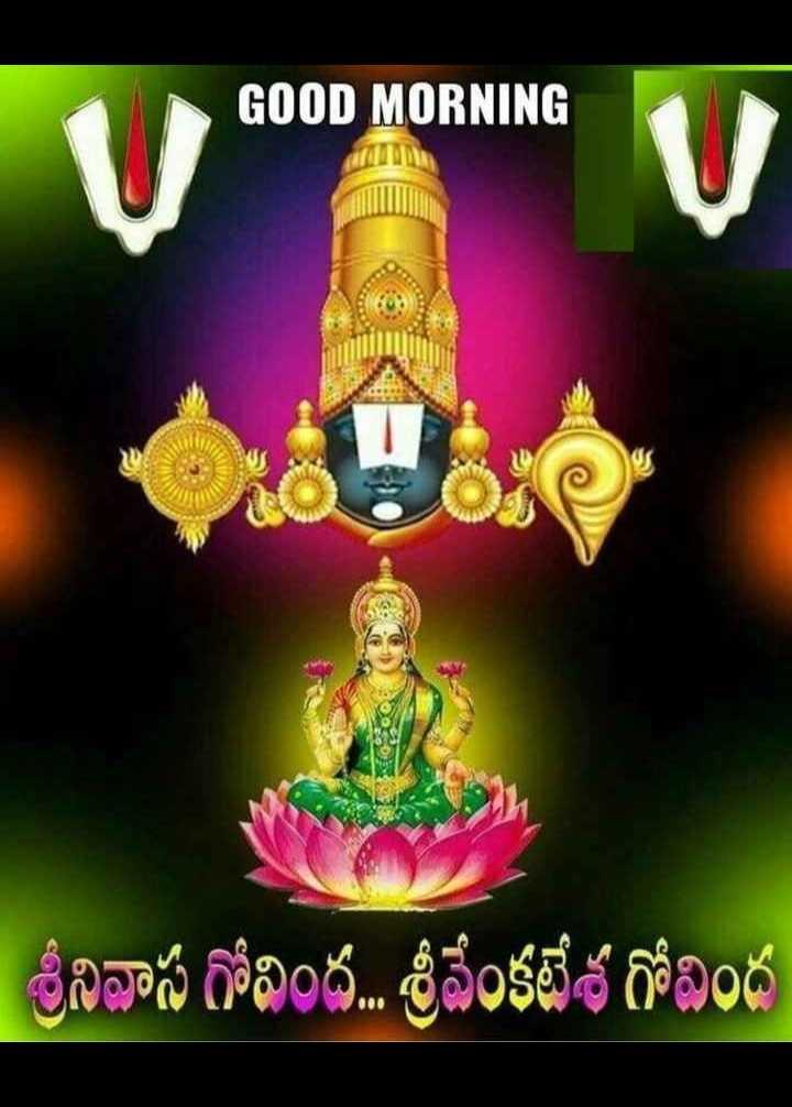 🌅శుభోదయం - GOOD MORNING ' శ్రీనివాస గోవింద . . . శ్రీవేంకటేశ గోవింద - ShareChat