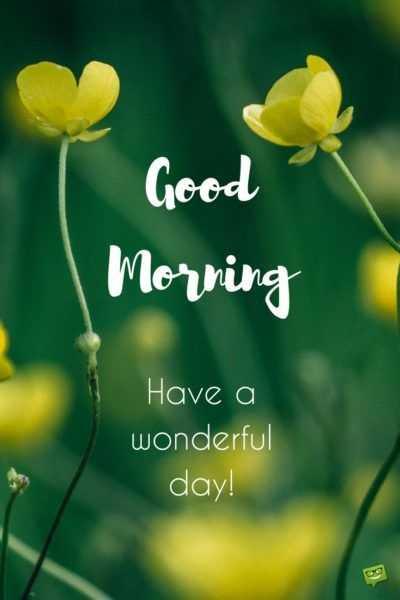 🌅శుభోదయం - Good Morning Have a wonderful day ! - ShareChat