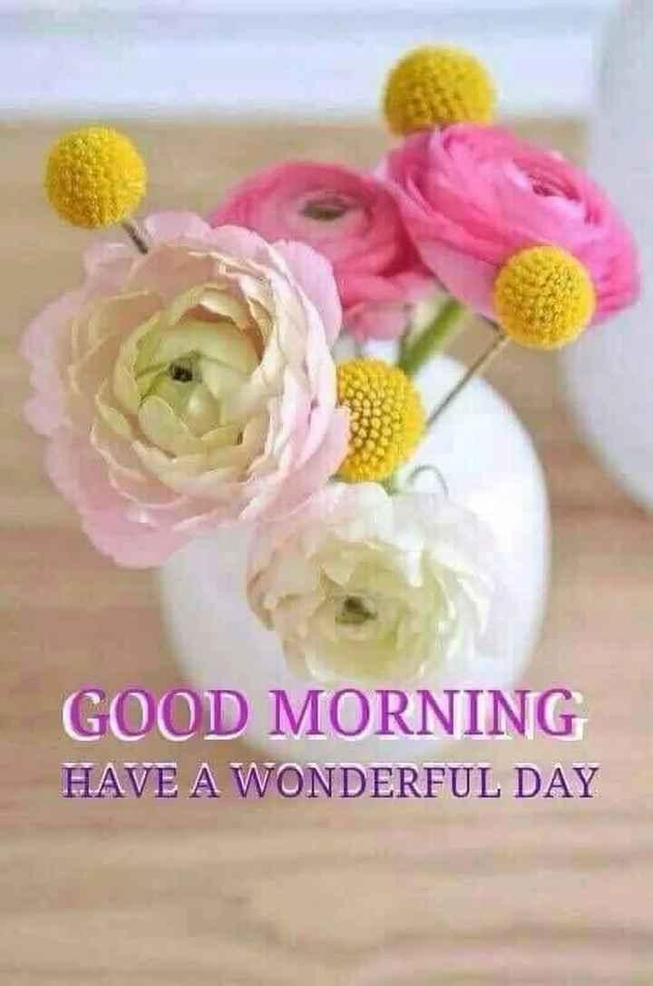 🌅శుభోదయం - GOOD MORNING HAVE A WONDERFUL DAY - ShareChat