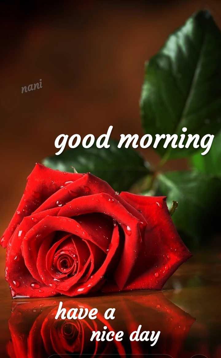 🌅శుభోదయం - nani good morning have a © nice day - ShareChat