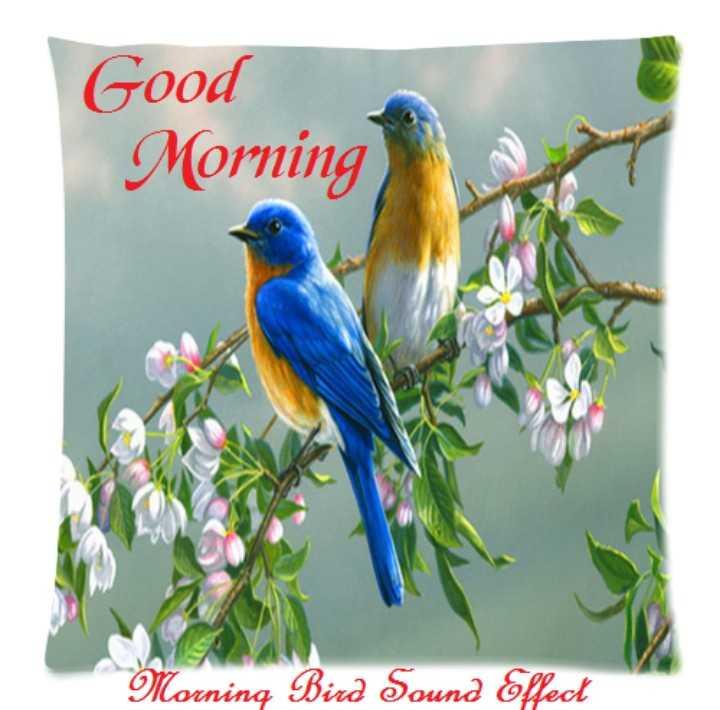 🌅శుభోదయం - Good Morning Morning Bird Sound Effect - ShareChat