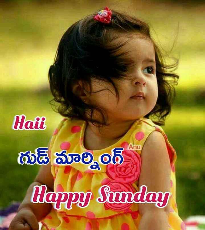 🌅శుభోదయం - Anu Hali థుడ్ మార్నింగ్ Happy Sunday - ShareChat