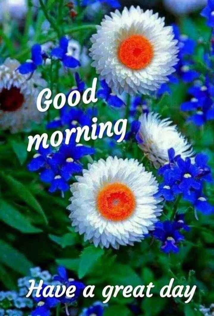 🌅శుభోదయం - Good morning Have a great day - ShareChat