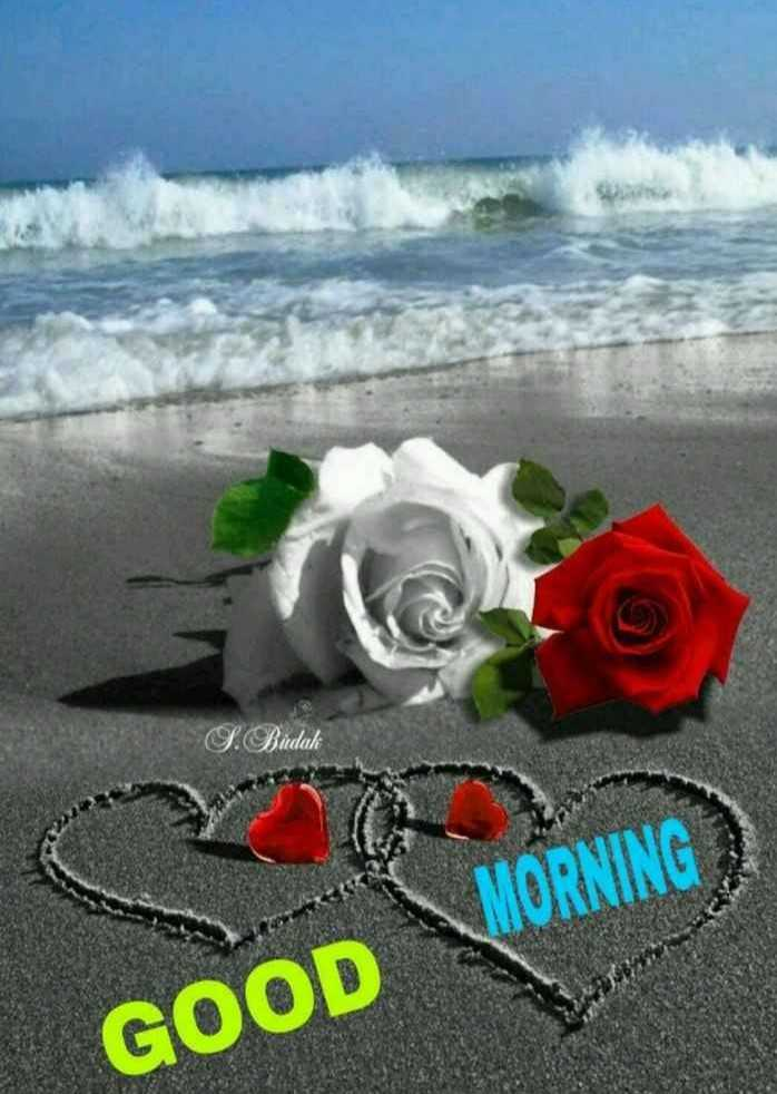 🌅శుభోదయం - F . Budak MORNING GOOD - ShareChat