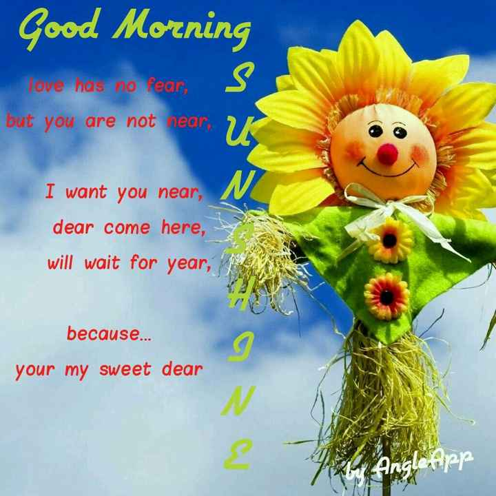 🌅శుభోదయం - Good Morning love nas no fear , but you are not near Ik I want you near , dear come here , will wait for year , because . . . your my sweet dear Angle App - ShareChat