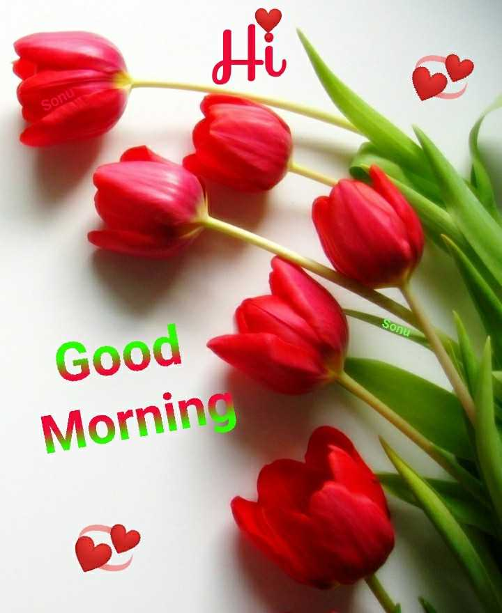 🌅శుభోదయం - Sonu Sonu Good Morning - ShareChat