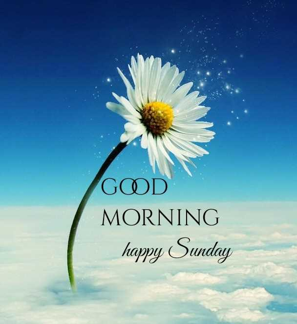 🌅శుభోదయం - GOD MORNING happy Sunday - ShareChat
