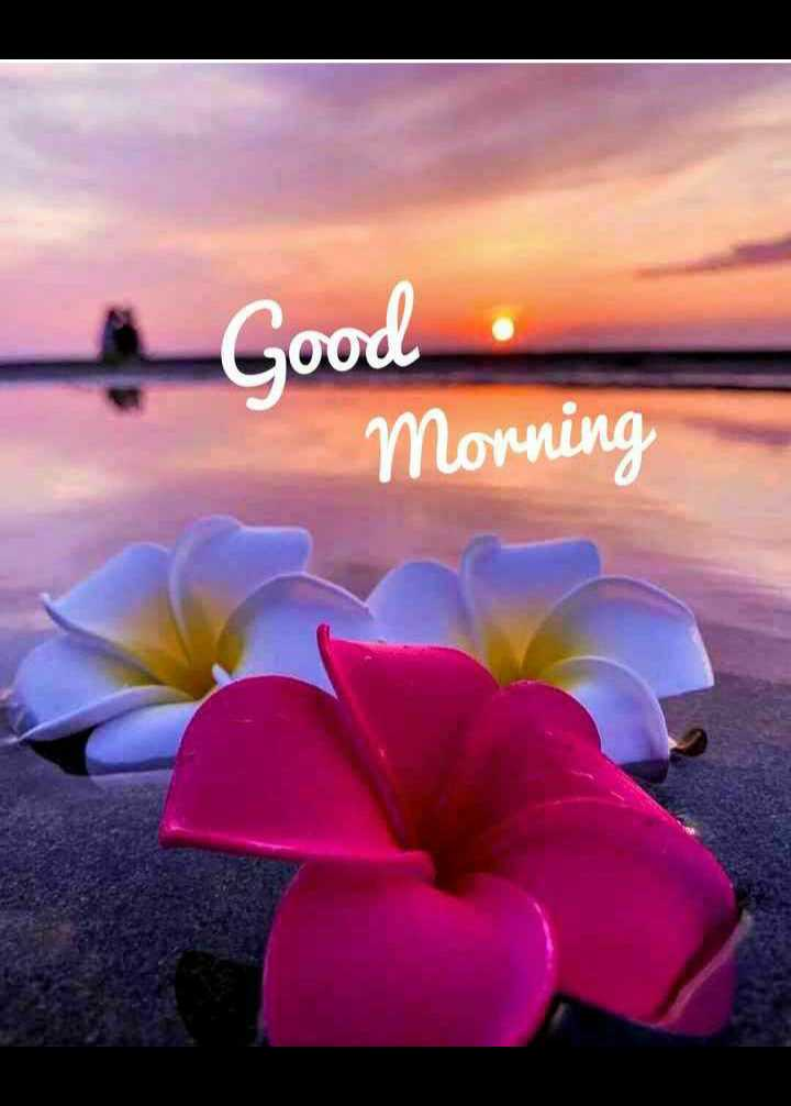 🌅శుభోదయం - & Good Morning - ShareChat