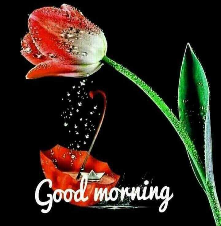 🌅శుభోదయం - ZURERS Good morning TEAVEY - ShareChat
