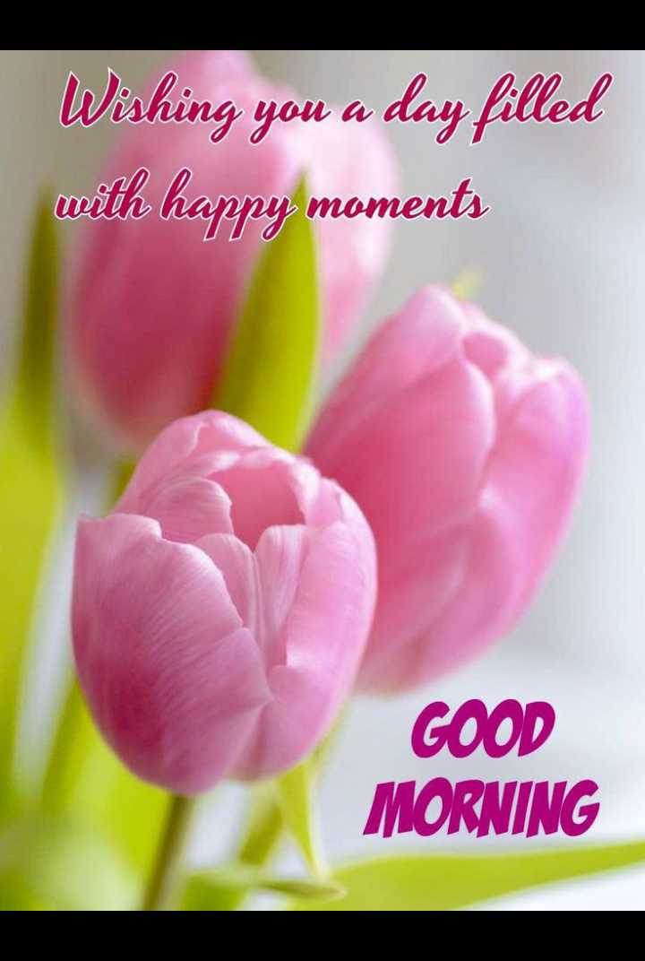 🌅శుభోదయం - Wishing you a day filled with happy moments GOOD MORNING - ShareChat