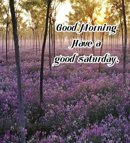 🌅శుభోదయం - Good Morning Have a good saturday - ShareChat
