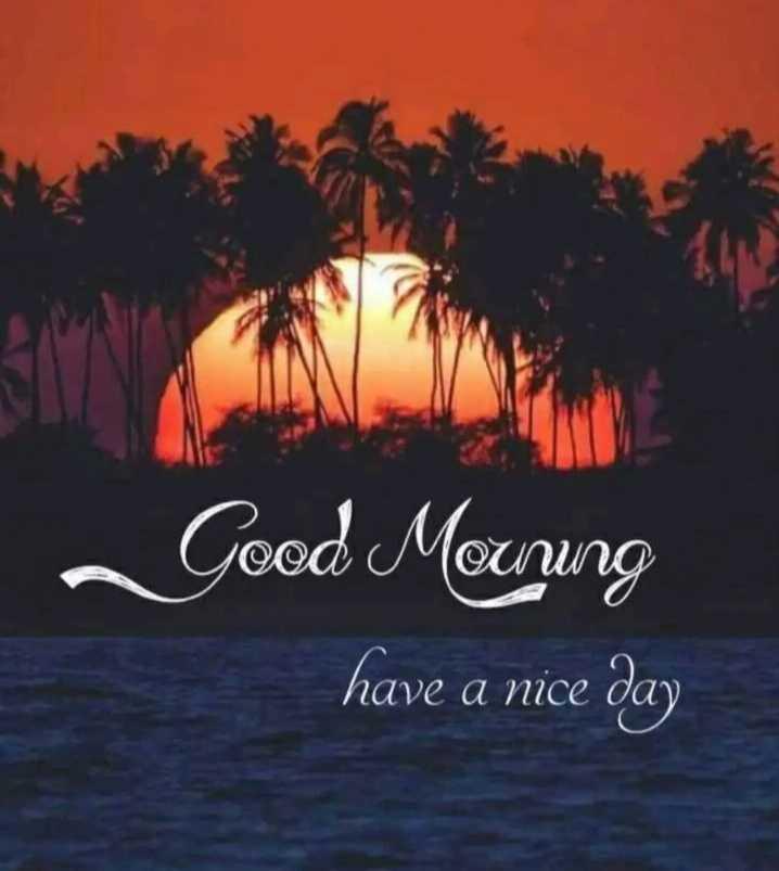 🌅శుభోదయం - ~ Good Meuring have a nice day - ShareChat
