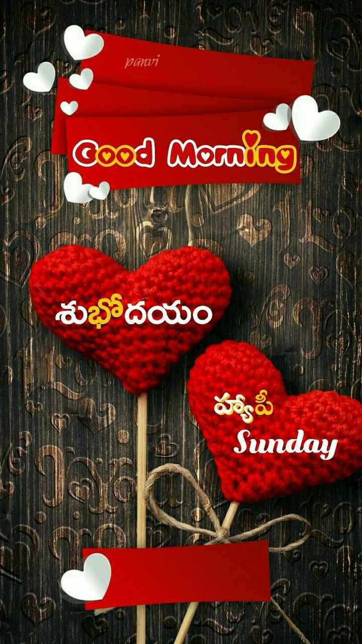 🌅శుభోదయం - pamai Cood Morning శుభోదయం హ్యాపీ Sunday - ShareChat
