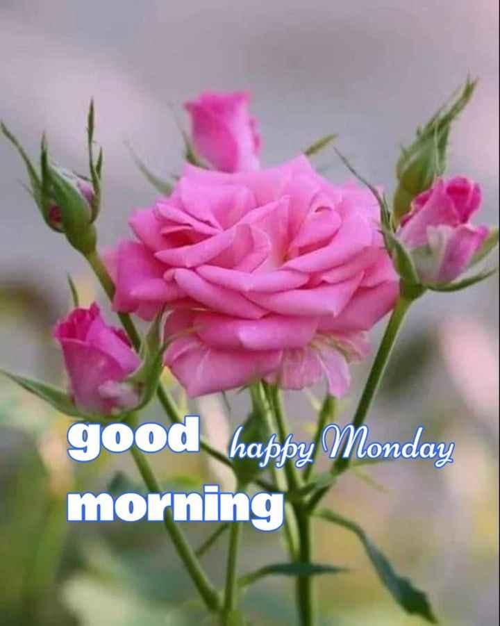 🌅శుభోదయం - good happy Monday morning - ShareChat