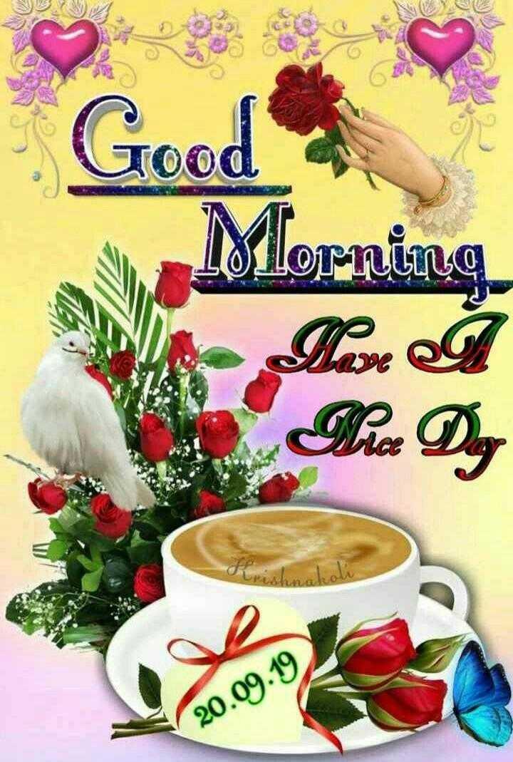 🌅శుభోదయం - Good Morning Here e 20 . 09 . 19 - ShareChat