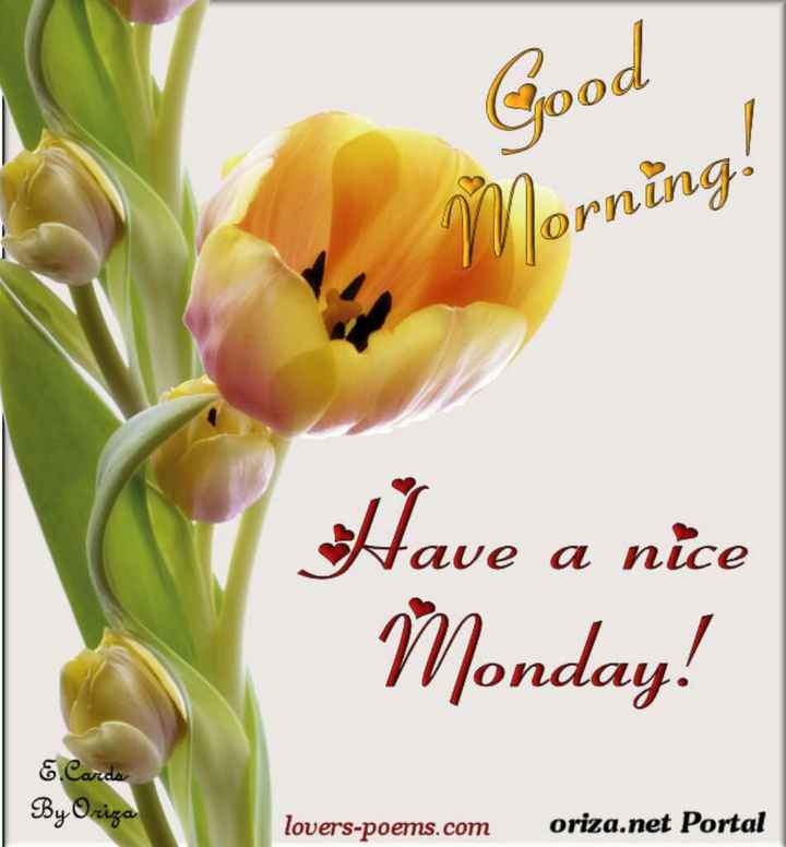 🌅శుభోదయం - Good Morning ! Have a nice Monday ! Cards By Oriza lovers - poems . com oriza . net Portal - ShareChat