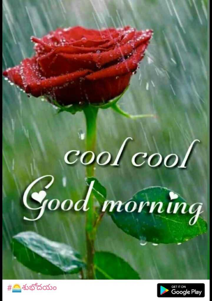 🌅శుభోదయం - cool cool Good morning # Sao GET IT ON Google Play - ShareChat