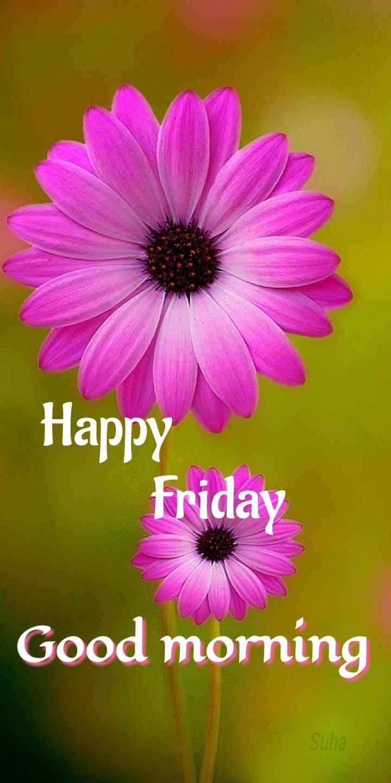 🌅శుభోదయం - Happy Friday Good morning Suha - ShareChat