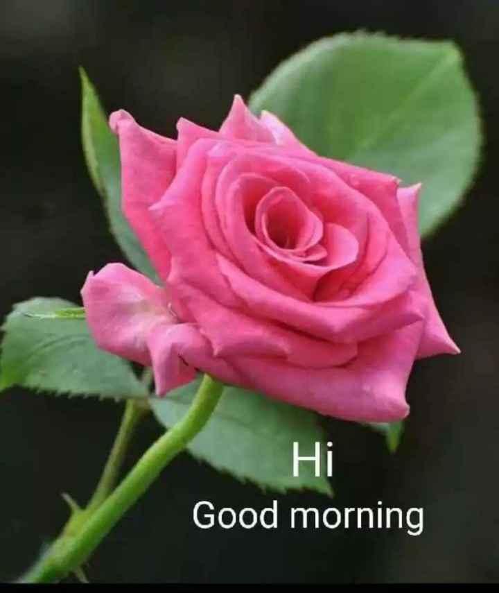 🌅శుభోదయం - Hi Good morning - ShareChat