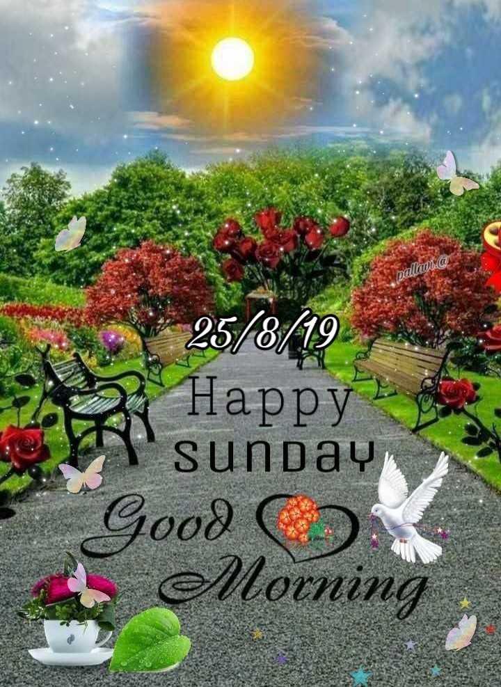 🌅శుభోదయం - Dalavia 25 / 8 / 19 ) Happy ' sunday Good a Morning - ShareChat