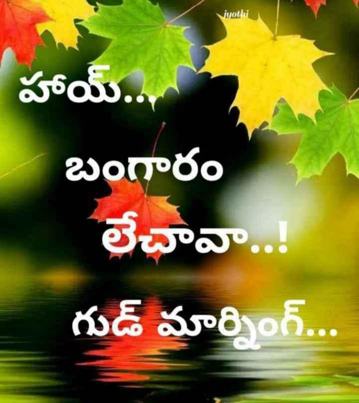 🌅శుభోదయం - Viyothi హాయ్ . . . బంగారం లేచావా . . . గుడ్ మార్నింగ్ . . . - ShareChat