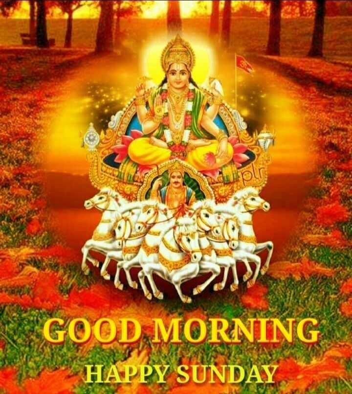 🌅శుభోదయం - CA * * GOOD MORNING HAPPY SUNDAY - ShareChat