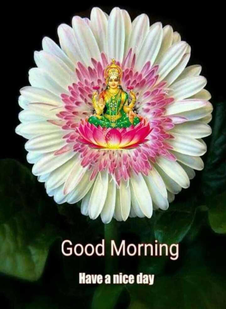🌅శుభోదయం - Good Morning Have a nice day - ShareChat