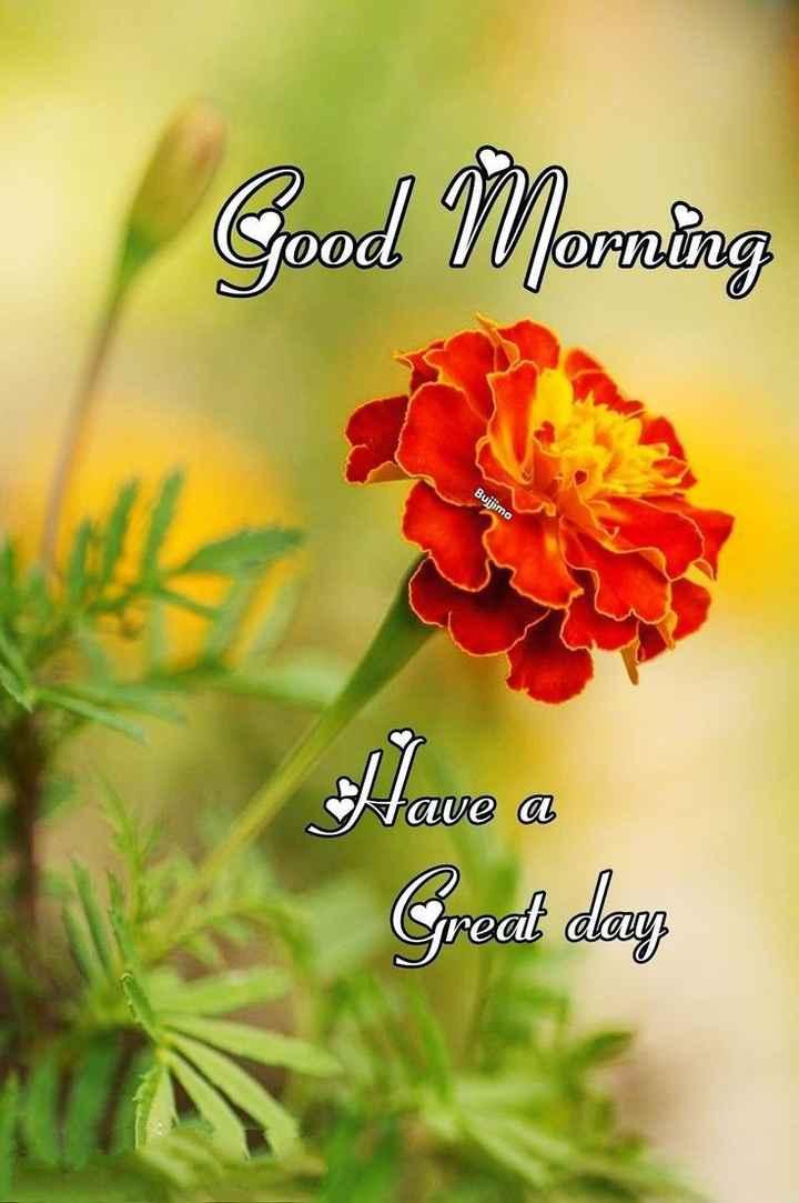 🌅శుభోదయం - Good Morning Buljima Alave a Great day - ShareChat