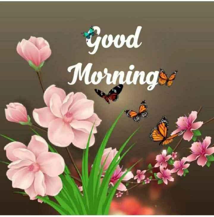🌅శుభోదయం - yood Morning - ShareChat