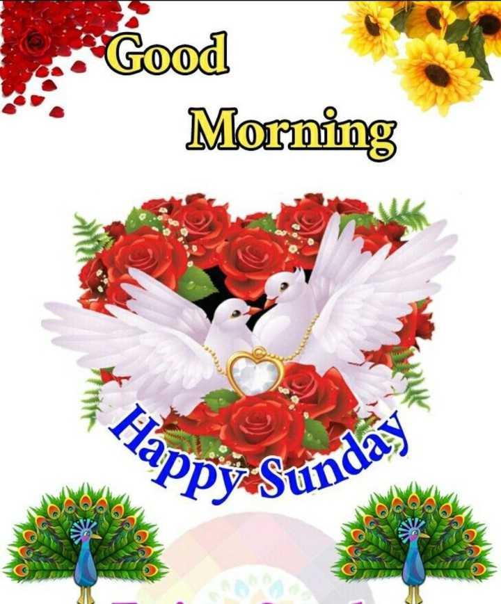 🌅శుభోదయం - 2 . Good Morning Happy Sunday - ShareChat