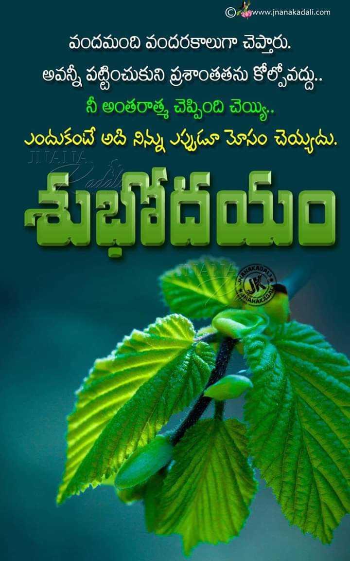 🌅శుభోదయం - www . jnanakadali . com వందమంది వందరకాలుగా చెప్తారు . ' అవన్నీ పట్టించుకుని ప్రశాంతతను కోల్పోవద్దు . . నీ అంతరాత్మ చెప్పింది చెయ్యి . . ఎందుకంటే అది నిన్ను ఎప్పుడూ మోసం చెయ్యదు . SITEIT జhం - ShareChat