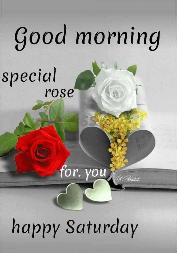 🌅శుభోదయం - Good morning speciale rose for . you S . Budak happy Saturday - ShareChat