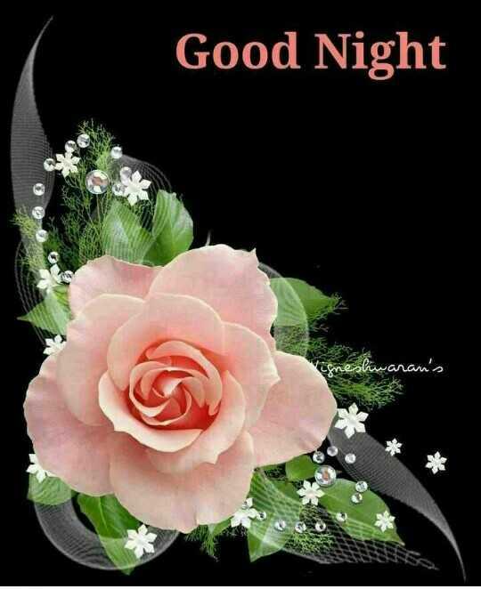 😰శ్రద్దాంజలి - Good Night L shwaran ' s - ShareChat