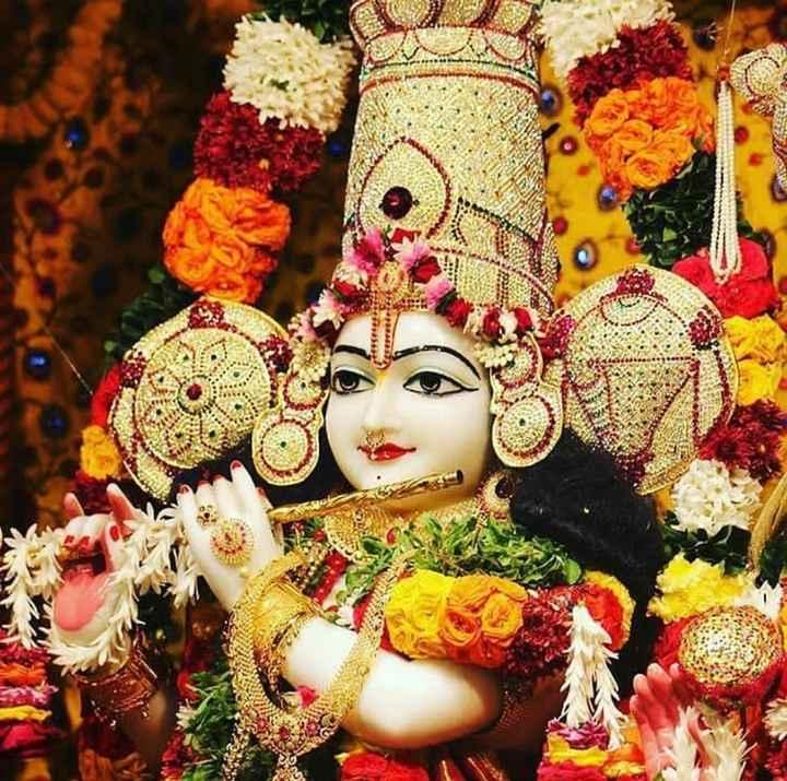 శ్రీకృష్ణ - ShareChat