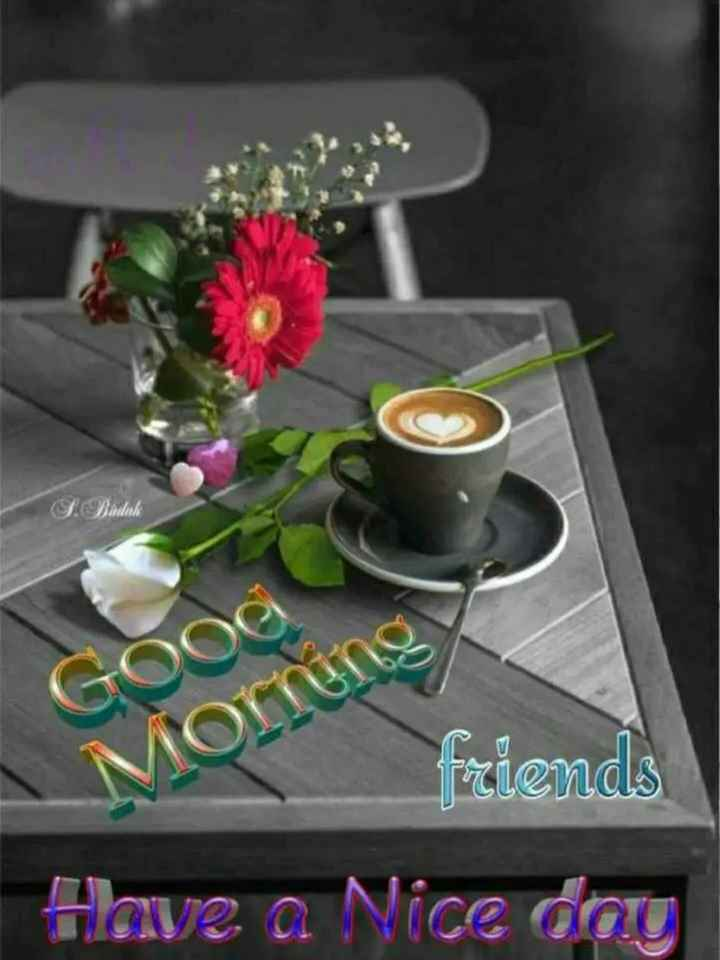 స్పెషల్ స్టేటస్ - Budak Gooe Morning friends Have a Nice dau - ShareChat