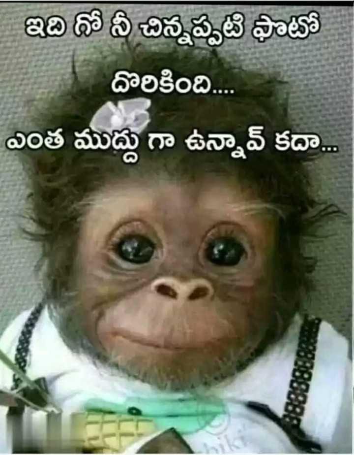 🤣స్మైల్ ప్లీజ్ - ఇది ధోనీ చిన్నప్పటి ఫొటో దొరికింది . . . . ఎంత ముద్దు గా ఉన్నావ్ కదా . . ma88888888 - ShareChat