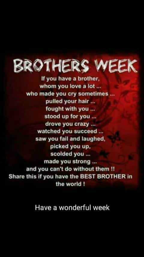 హ్యాపీ నేషనల్ బ్రదర్స్ డే - BROTHERS WEEK If you have a brother , whom you love a lot . . who made you cry sometimes . . . pulled your hair . . . fought with you . . stood up for you . . . drove you crazy . . . watched you succeed . . . saw you fail and laughed , picked you up . scolded you . . . made you strong . . . and you can ' t do without them ! ! Share this if you have the BEST BROTHER in the world ! Have a wonderful week - ShareChat