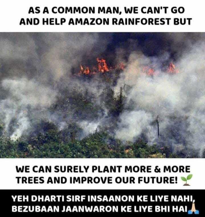 🔥 ಅಮೆಜಾನ್ ಕಾಳ್ಗಿಚ್ಚು - AS A COMMON MAN , WE CAN ' T GO AND HELP AMAZON RAINFOREST BUT WE CAN SURELY PLANT MORE & MORE TREES AND IMPROVE OUR FUTURE ! YEH DHARTI SIRF INSAANON KE LIYE NAHI , BEZUBAAN JAANWARON KE LIYE BHI HAU - ShareChat