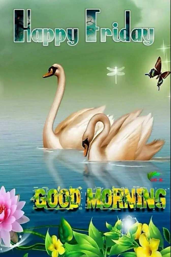 🙏 ಆಷಾಢ ಶುಕ್ರವಾರ - Happy Friday - ShareChat