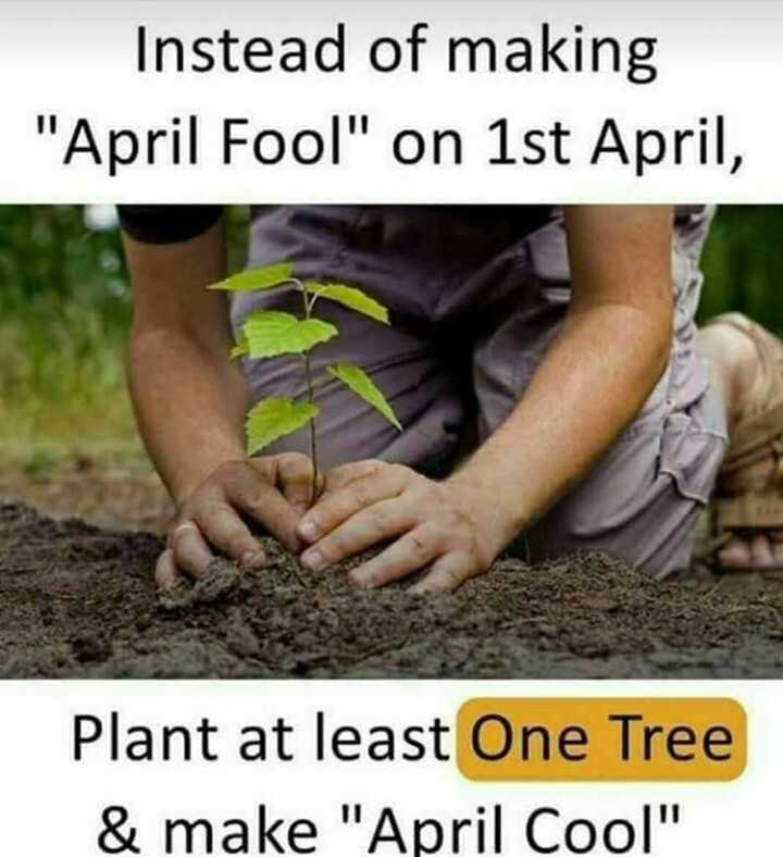 🐒ಏಪ್ರಿಲ್ ಫೂಲ್/ಕೂಲ್? - Instead of making April Fool on 1st April , Plant at least One Tree & make April Cool - ShareChat