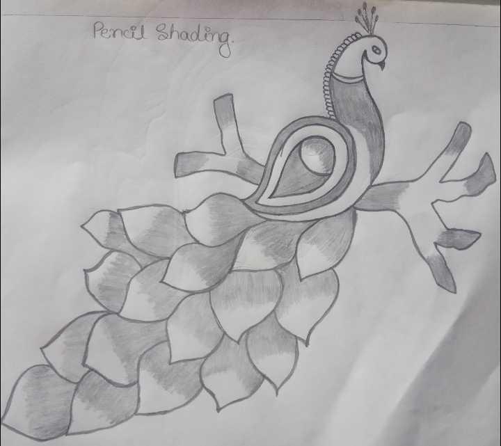 🎨ನನ್ನ ಪೇಂಟಿಂಗ್ - Pencil Shading ԿԱ , - ShareChat