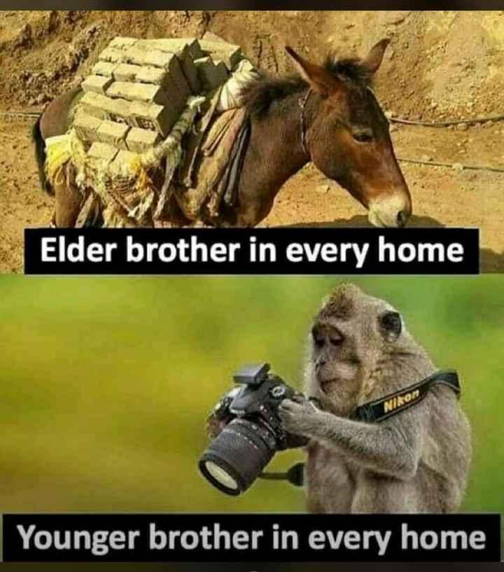 ನನ್ನಪ್ರಕಾರ - Elder brother in every home Younger brother in every home - ShareChat