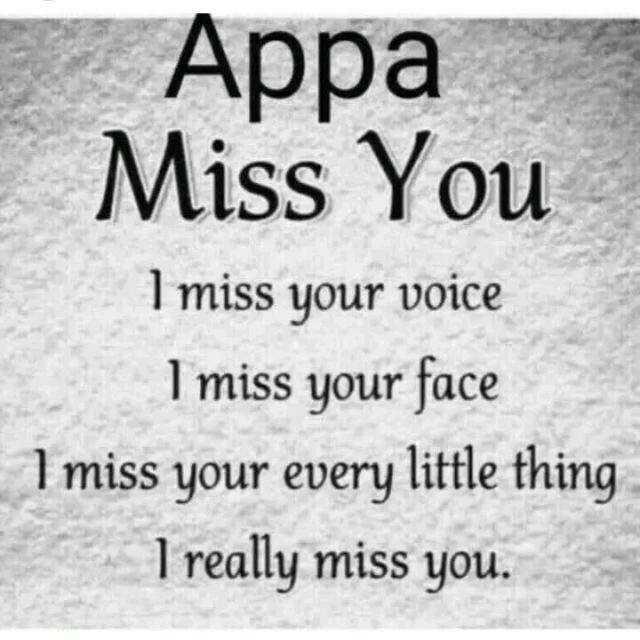 ನನ್ನ ಪ್ರೋಪೈಲ್ - Appa Miss You I miss your voice I miss your face I miss your every little thing I really miss you . - ShareChat