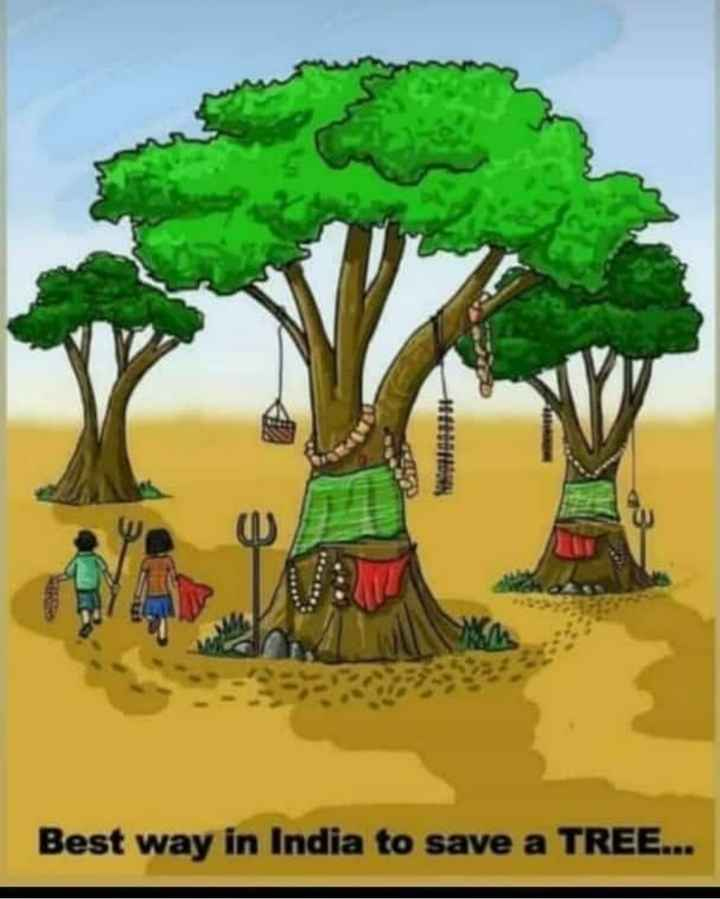 ಪರಿಸರ ಪ್ರೇಮಿ - Best way in India to save a TREE . . . - ShareChat