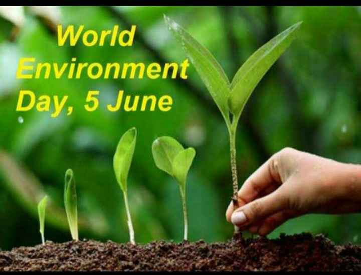 ಪರಿಸರ ಪ್ರೇಮಿ - World Environment Day , 5 June - ShareChat
