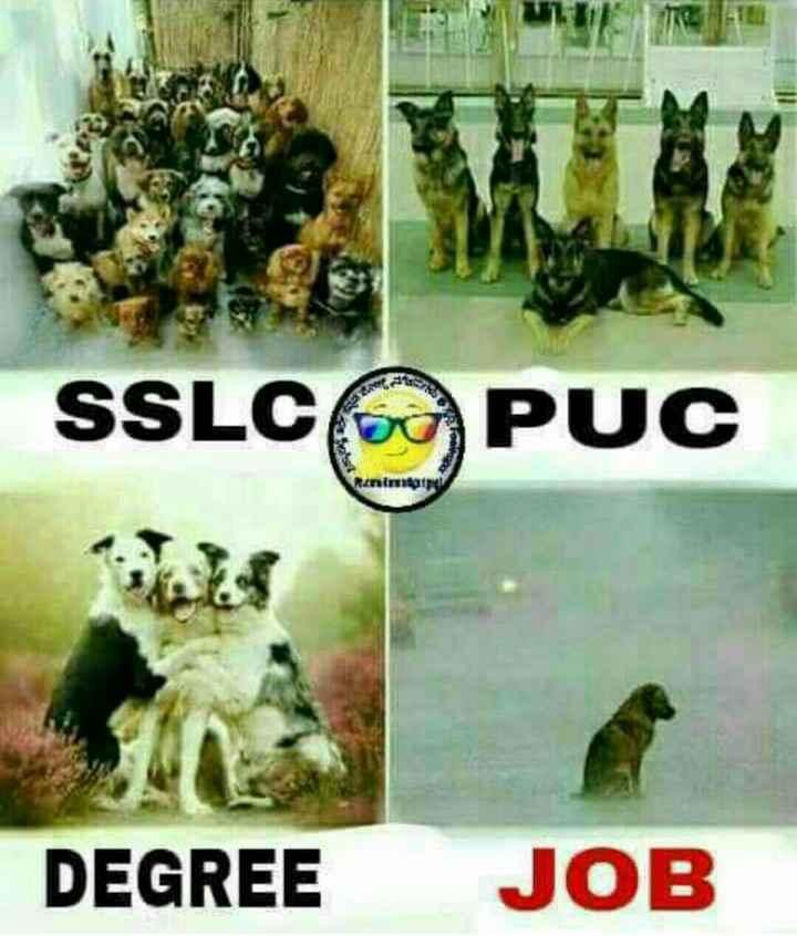 🤝ಫ್ರೆಂಡ್ ಶಿಪ್ ಸ್ಟೇಟಸ್ - SSLC PUC ninin DEGREE JOB - ShareChat