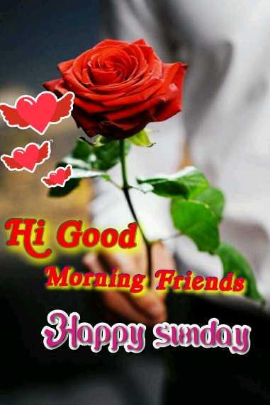 ಭಾನುವಾರದ 🌞🌻ಶುಭೋದಯ☕🍵🎭 - Hi Good Morning Friends Sloppy Sunday - ShareChat
