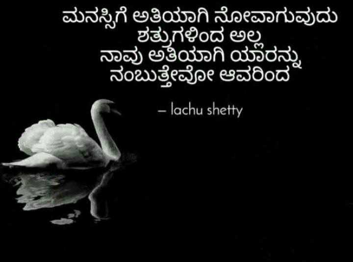 💔ಲವ್ ಫೈಲ್ಯೂರ್ - ಮನಸ್ಸಿಗೆ ಅತಿಯಾಗಿ ನೋವಾಗುವುದು ಶತ್ರುಗಳಿಂದ ಅಲ್ಲ ನಾವು ಅತಿಯಾಗಿ ಯಾರನ್ನು ನಂಬುತ್ತೇವೋ ಆವರಿಂದ - lachu shetty - ShareChat