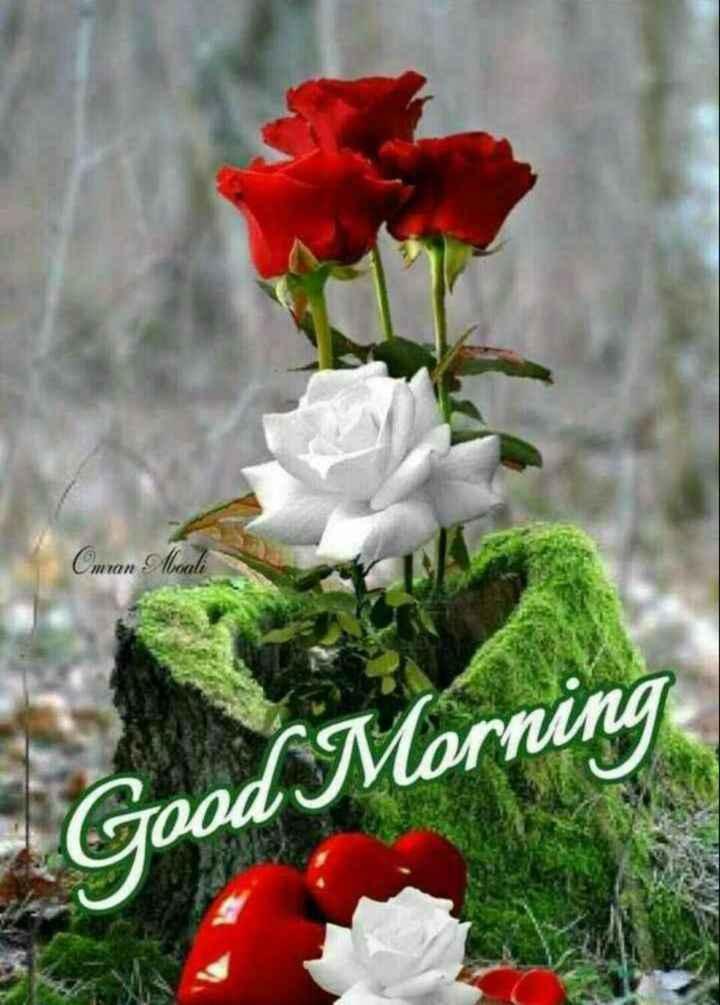 🎁ವಾರ್ಷಿಕೋತ್ಸವ - Cmran Mouli MON Good Morning - ShareChat